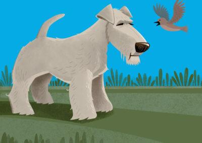 Terrier and Bird_2